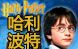 Harry Potter 哈利波特 (8)